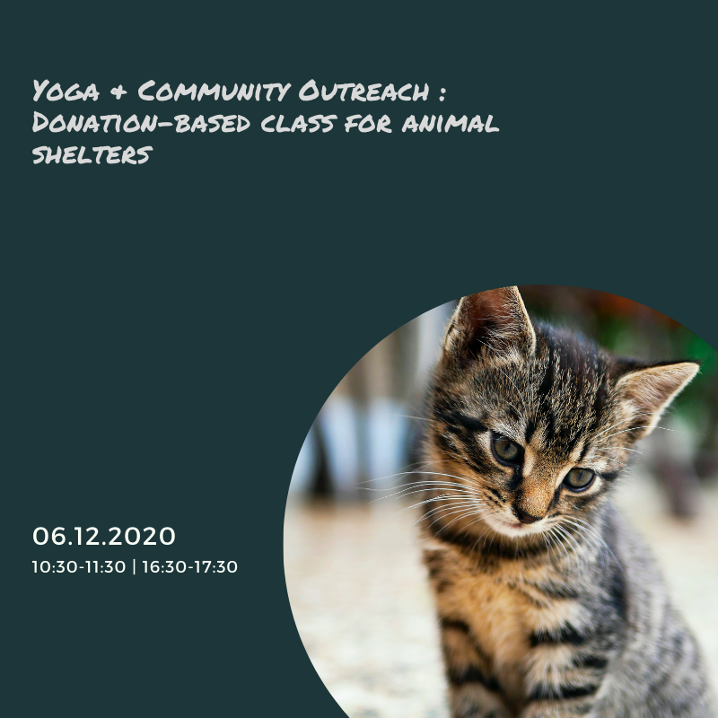 donation based yoga class for the animals